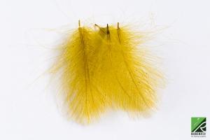 RIBCDC10 - Oliva amarillento
